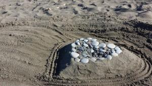 beach-850138_1920